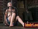 Dominated Niki in a cage