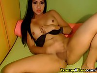 Pretty Shemale Plays her Big Dick